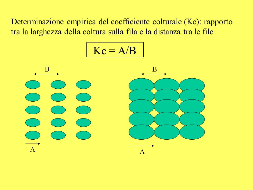 Determinazione empirica del coefficiente colturale (Kc): rapporto tra la larghezza della coltura sulla fila e la distanza tra le file