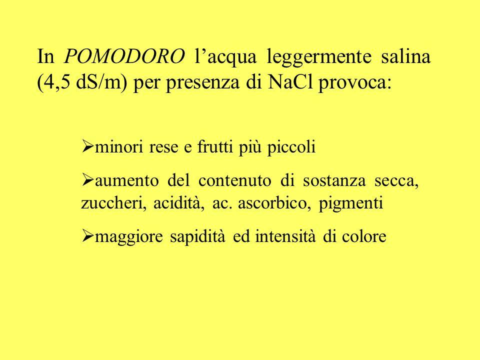 In POMODORO l'acqua leggermente salina (4,5 dS/m) per presenza di NaCl provoca: