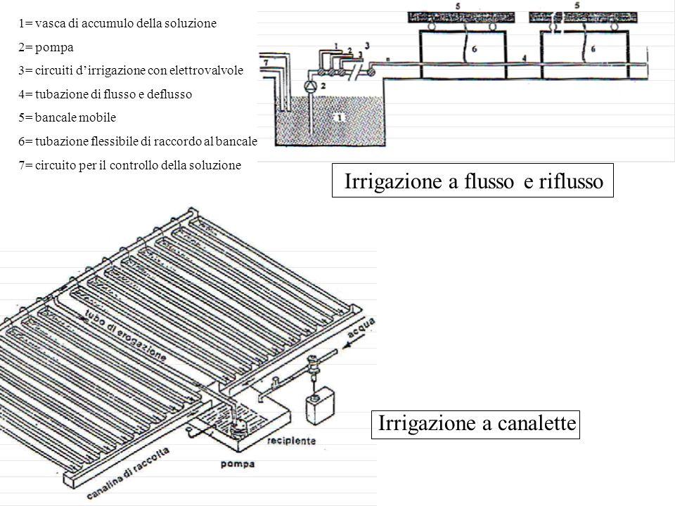 Irrigazione a flusso e riflusso