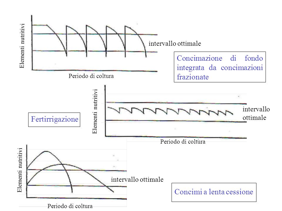 Concimazione di fondo integrata da concimazioni frazionate