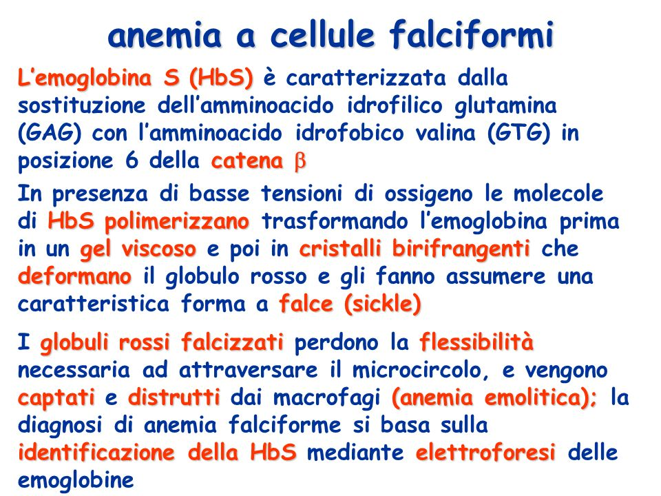 anemia a cellule falciformi