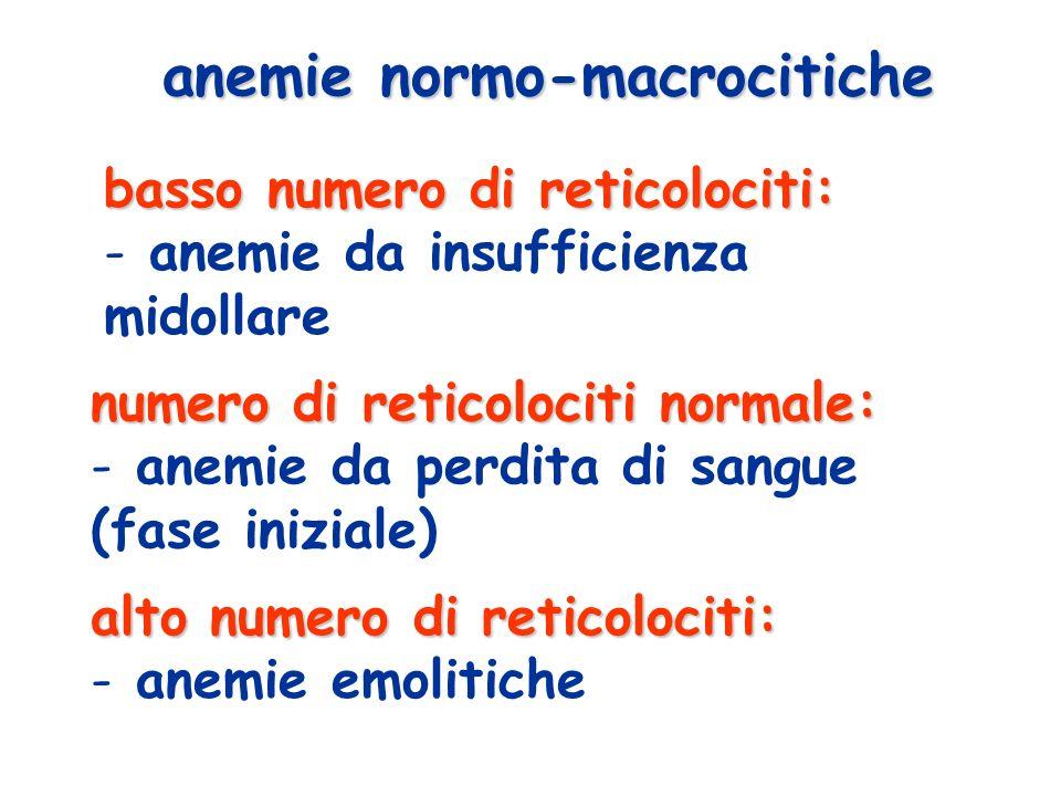 anemie normo-macrocitiche