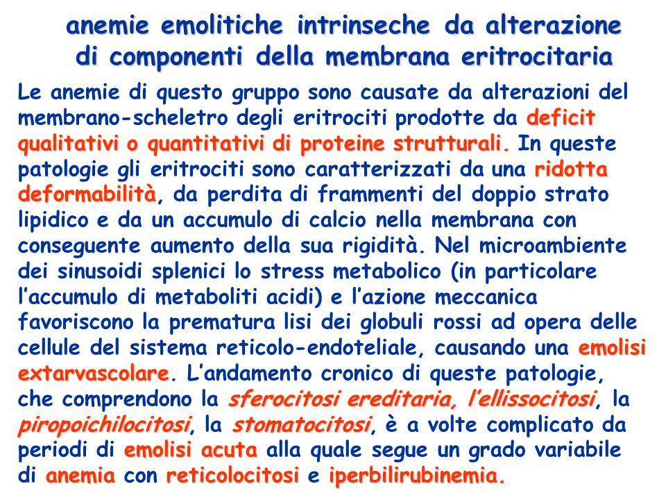 anemie emolitiche intrinseche da alterazione di componenti della membrana eritrocitaria