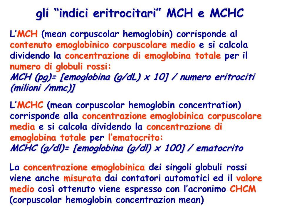 gli indici eritrocitari MCH e MCHC