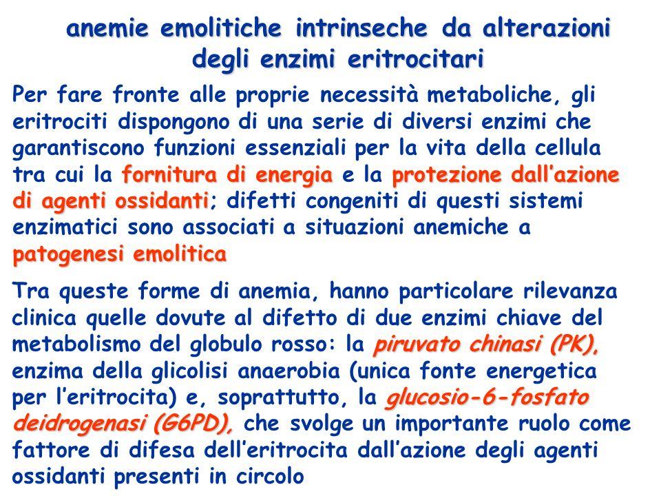 anemie emolitiche intrinseche da alterazioni degli enzimi eritrocitari