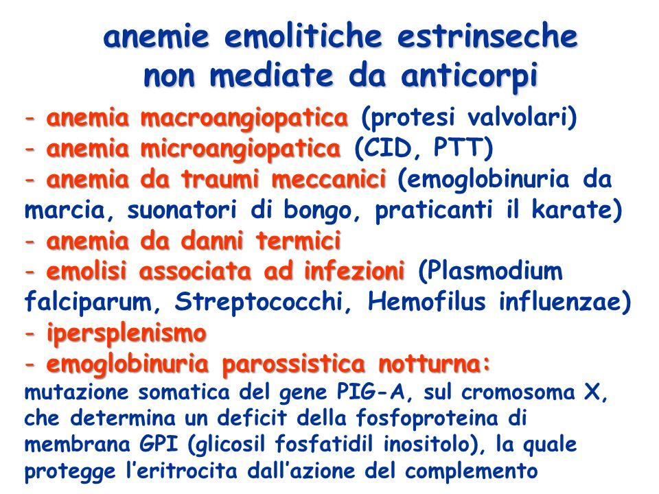 anemie emolitiche estrinseche non mediate da anticorpi