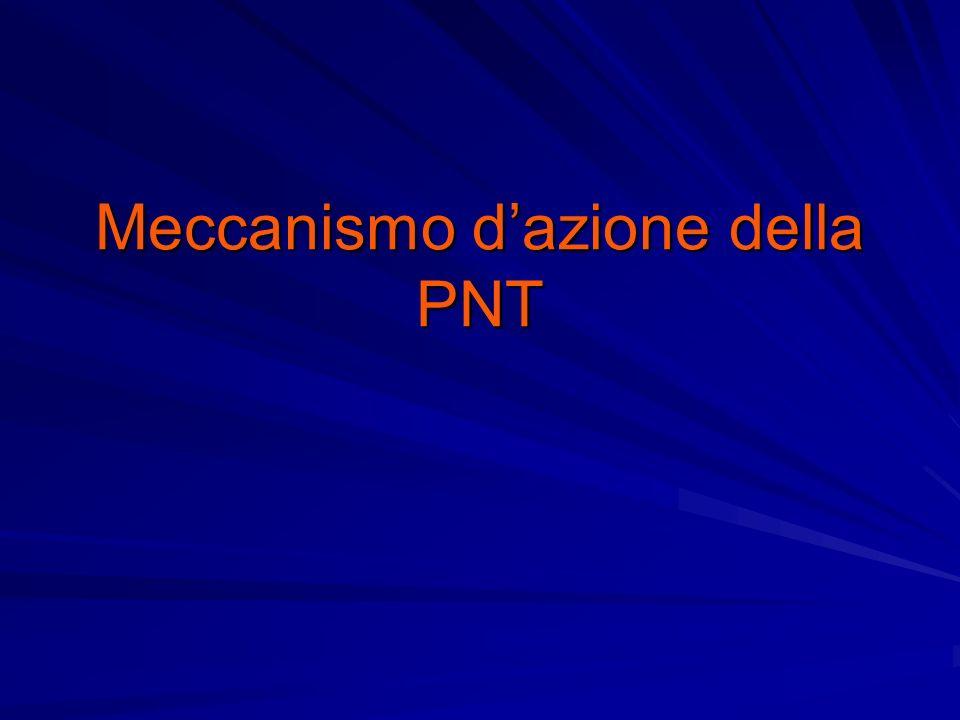 Meccanismo d'azione della PNT