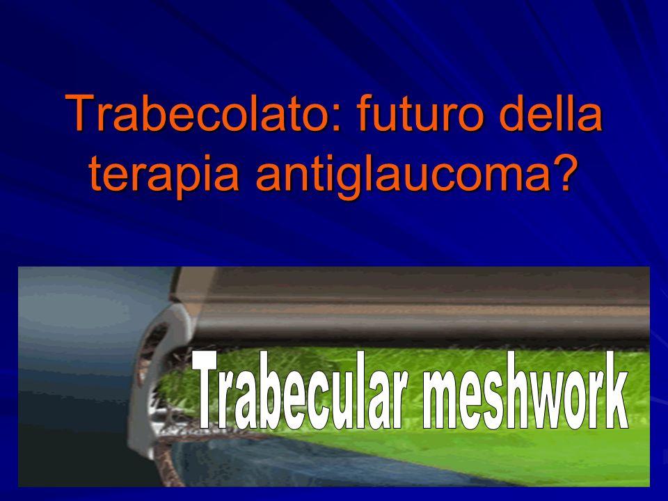 Trabecolato: futuro della terapia antiglaucoma