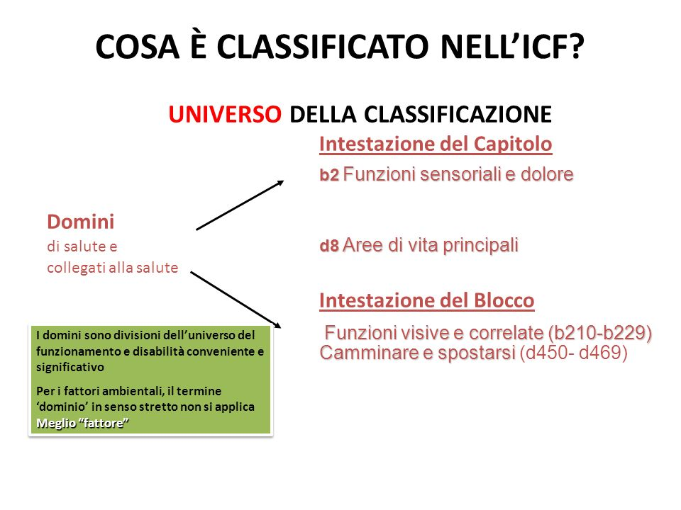 COSA È CLASSIFICATO NELL'ICF
