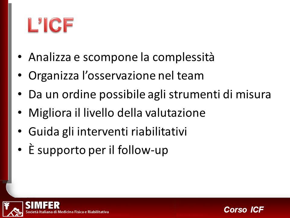 L'ICF Analizza e scompone la complessità