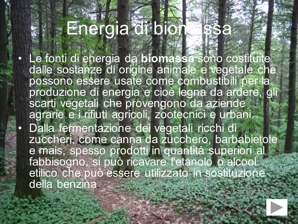 Energia di biomassa