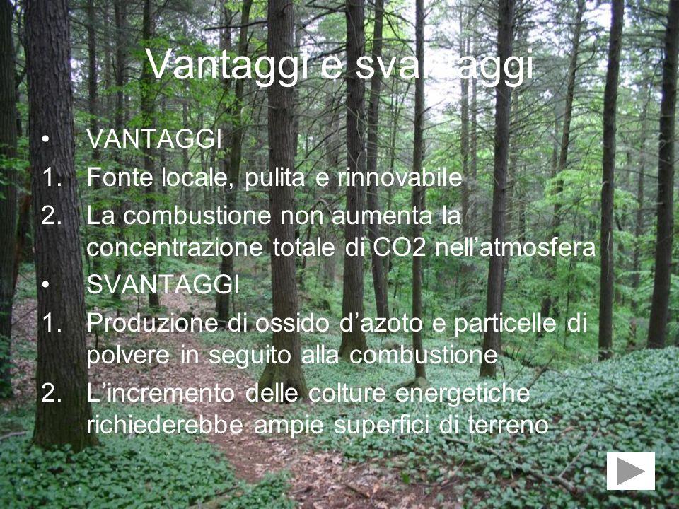 Vantaggi e svantaggi VANTAGGI Fonte locale, pulita e rinnovabile