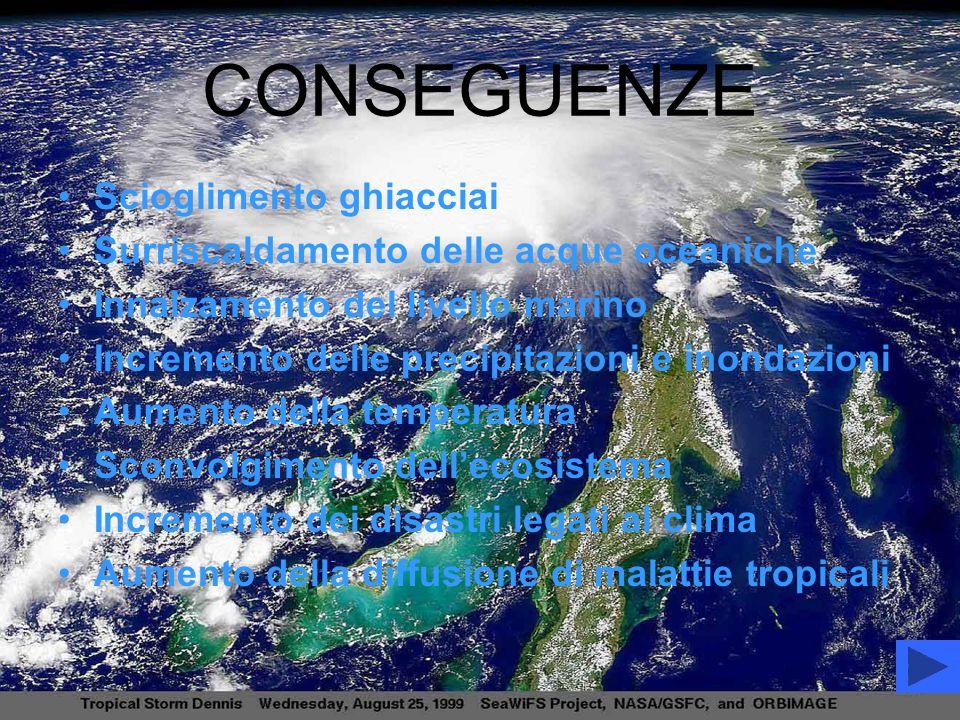 CONSEGUENZE Scioglimento ghiacciai