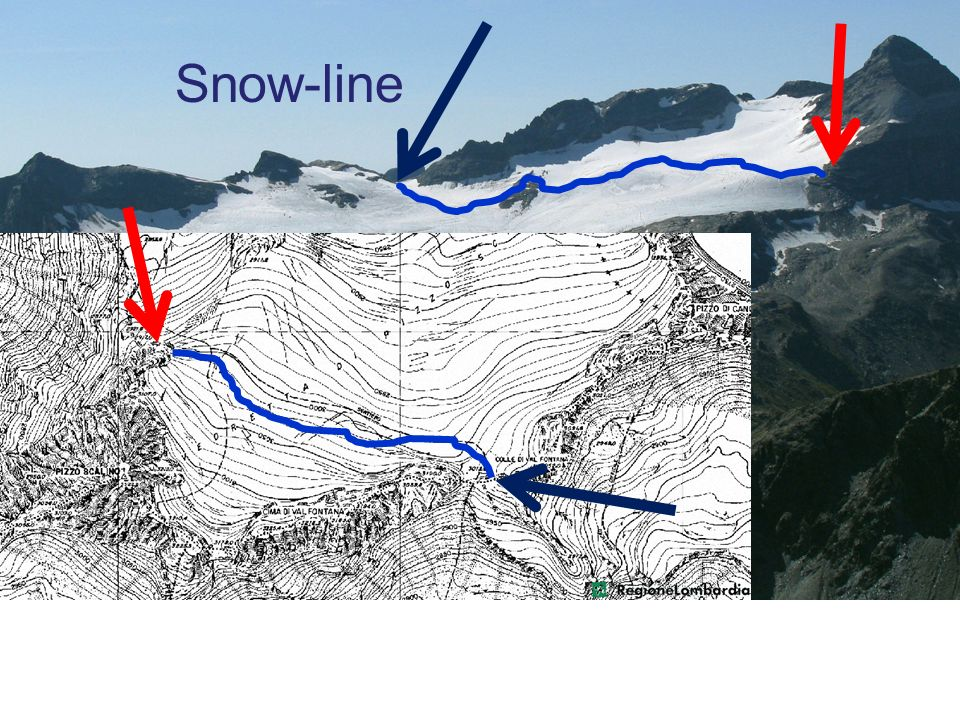 Snow-line