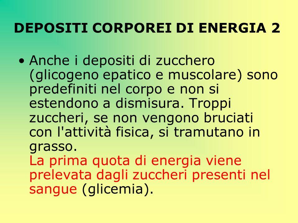 DEPOSITI CORPOREI DI ENERGIA 2