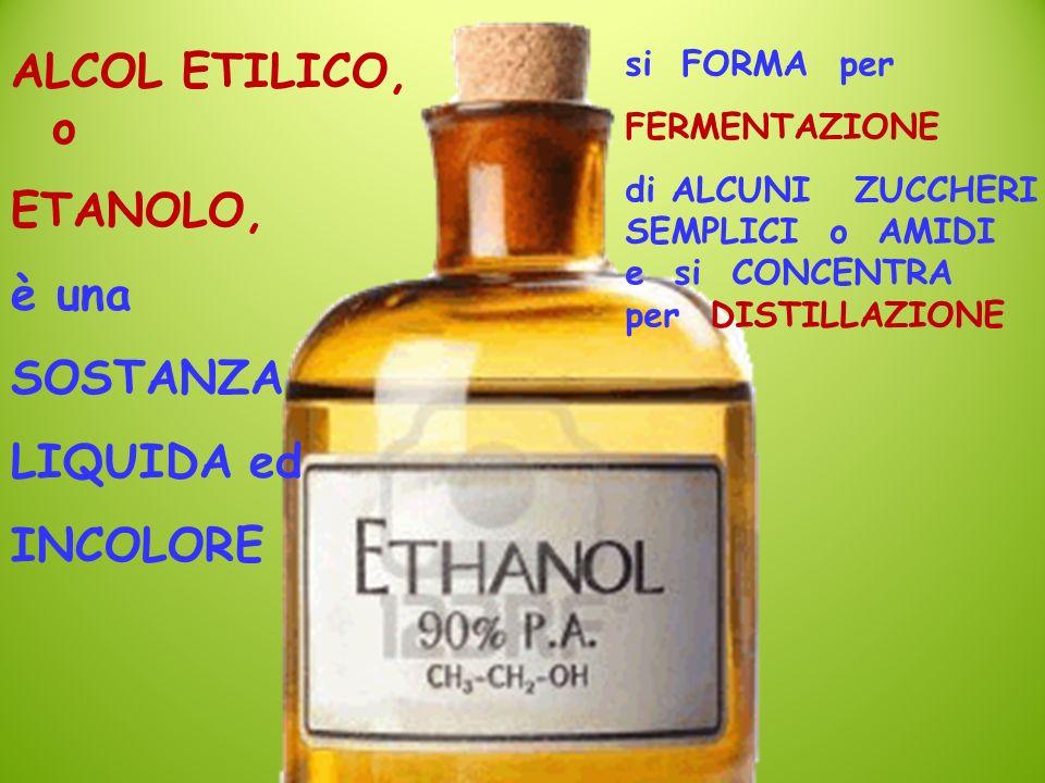 ALCOL ETILICO, o ETANOLO, è una SOSTANZA LIQUIDA ed INCOLORE