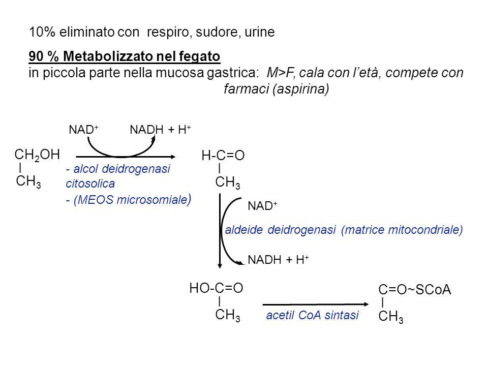 10% eliminato con respiro, sudore, urine 90 % Metabolizzato nel fegato