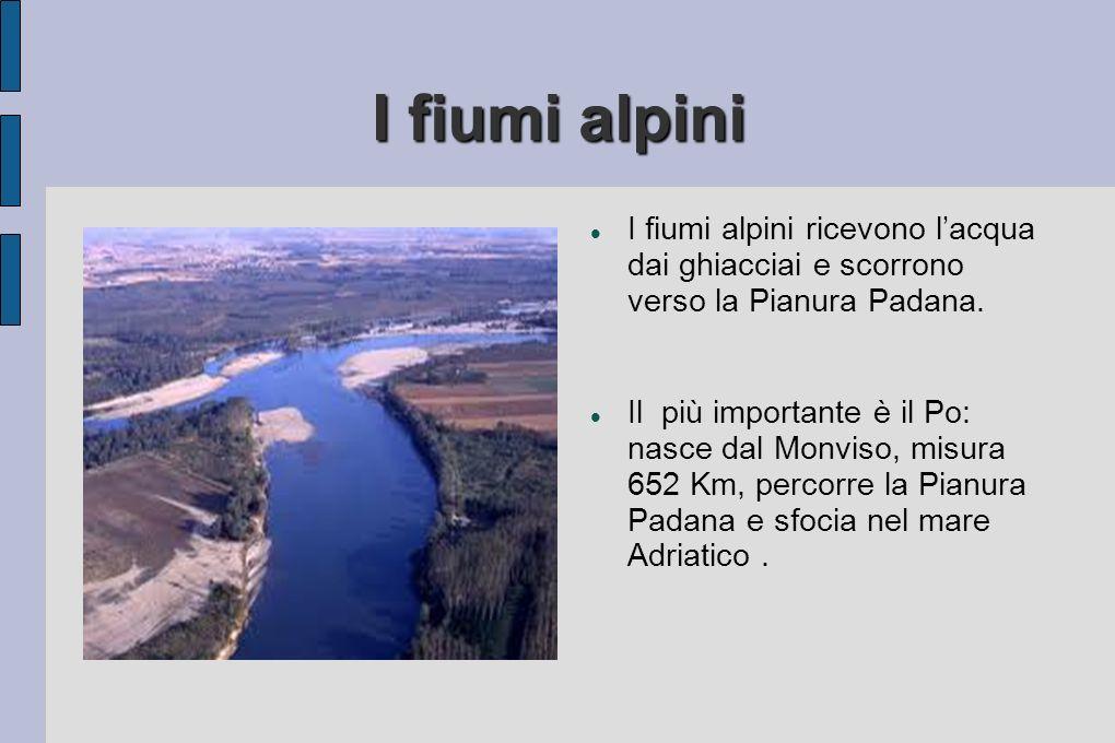 I fiumi alpini I fiumi alpini ricevono l'acqua dai ghiacciai e scorrono verso la Pianura Padana.