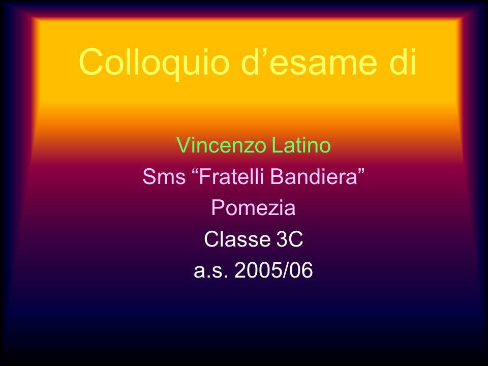 Vincenzo Latino Sms Fratelli Bandiera Pomezia Classe 3C a.s. 2005/06