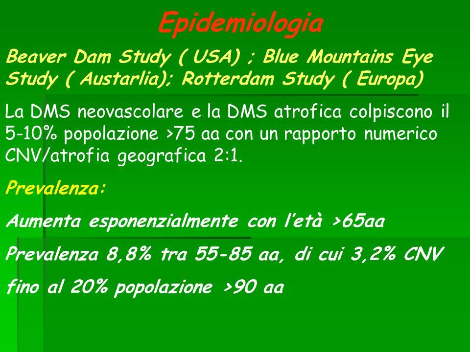 Epidemiologia Beaver Dam Study ( USA) ; Blue Mountains Eye Study ( Austarlia); Rotterdam Study ( Europa)
