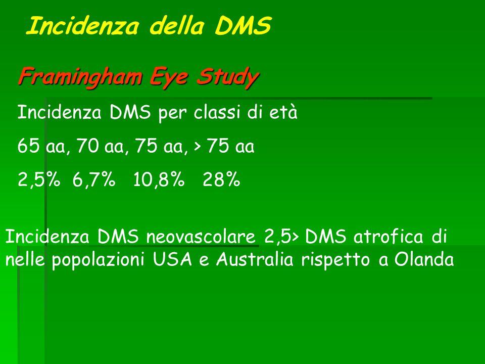Incidenza della DMS Framingham Eye Study