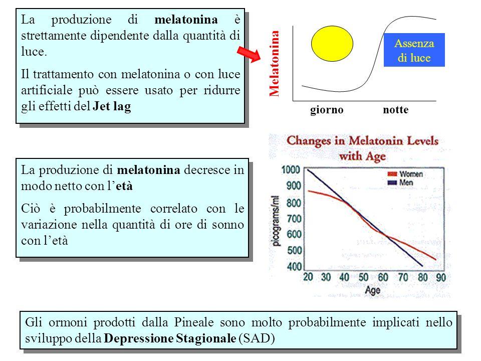 La produzione di melatonina decresce in modo netto con l'età