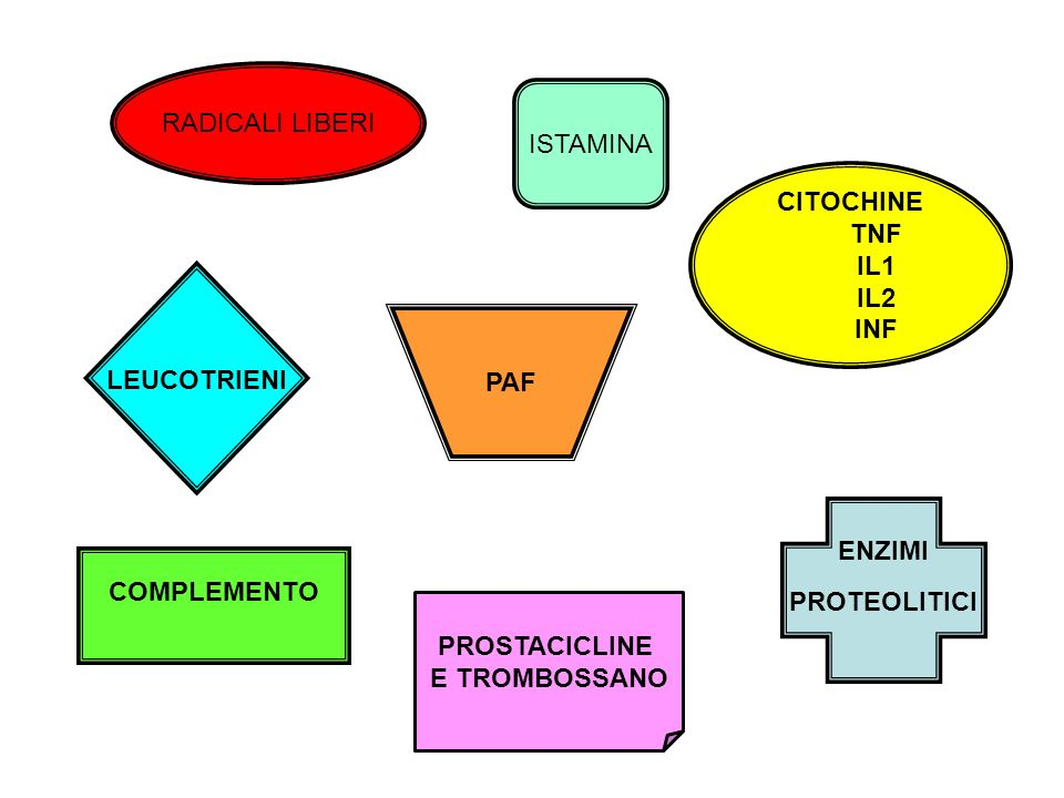 RADICALI LIBERI ISTAMINA. CITOCHINE. TNF. IL1. IL2. INF. LEUCOTRIENI. PAF. ENZIMI. PROTEOLITICI.