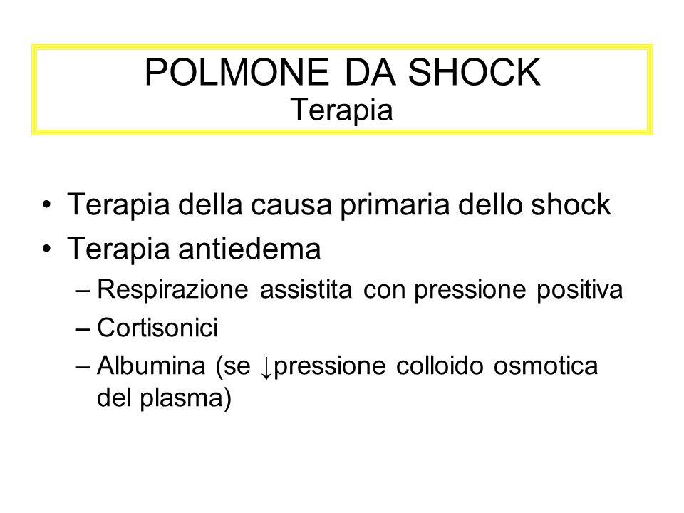 POLMONE DA SHOCK Terapia