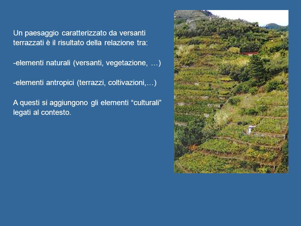 Un paesaggio caratterizzato da versanti terrazzati è il risultato della relazione tra: