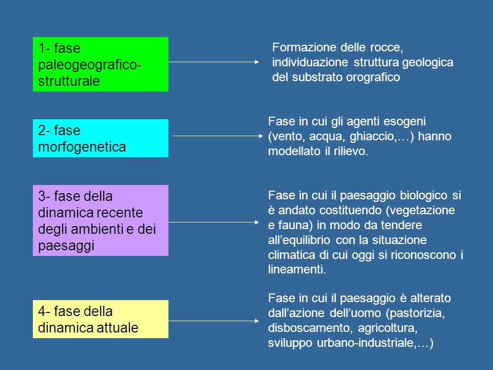 1- fase paleogeografico-strutturale