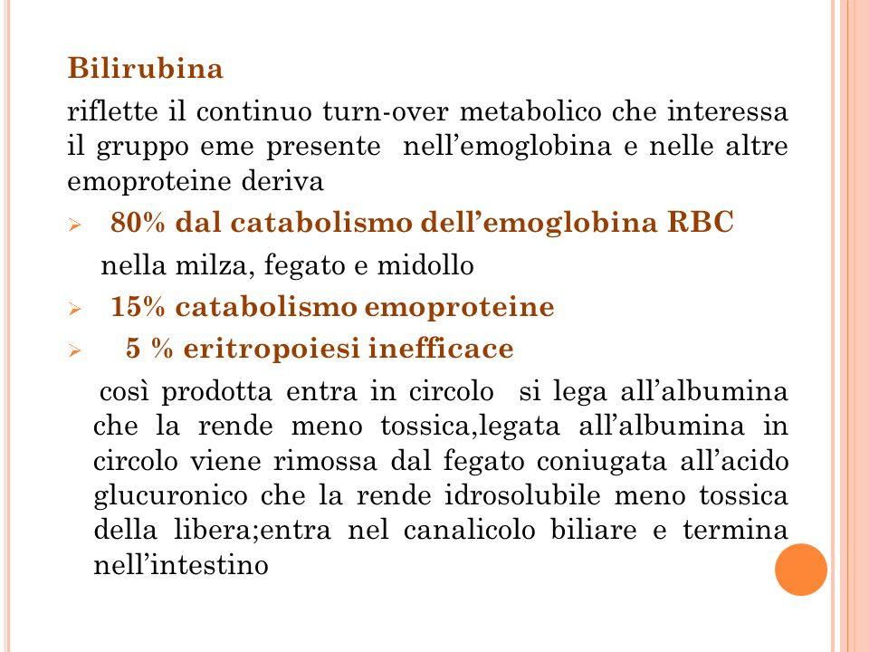Bilirubina riflette il continuo turn-over metabolico che interessa il gruppo eme presente nell'emoglobina e nelle altre emoproteine deriva.