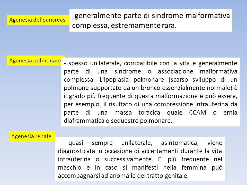 generalmente parte di sindrome malformativa complessa, estremamente rara.