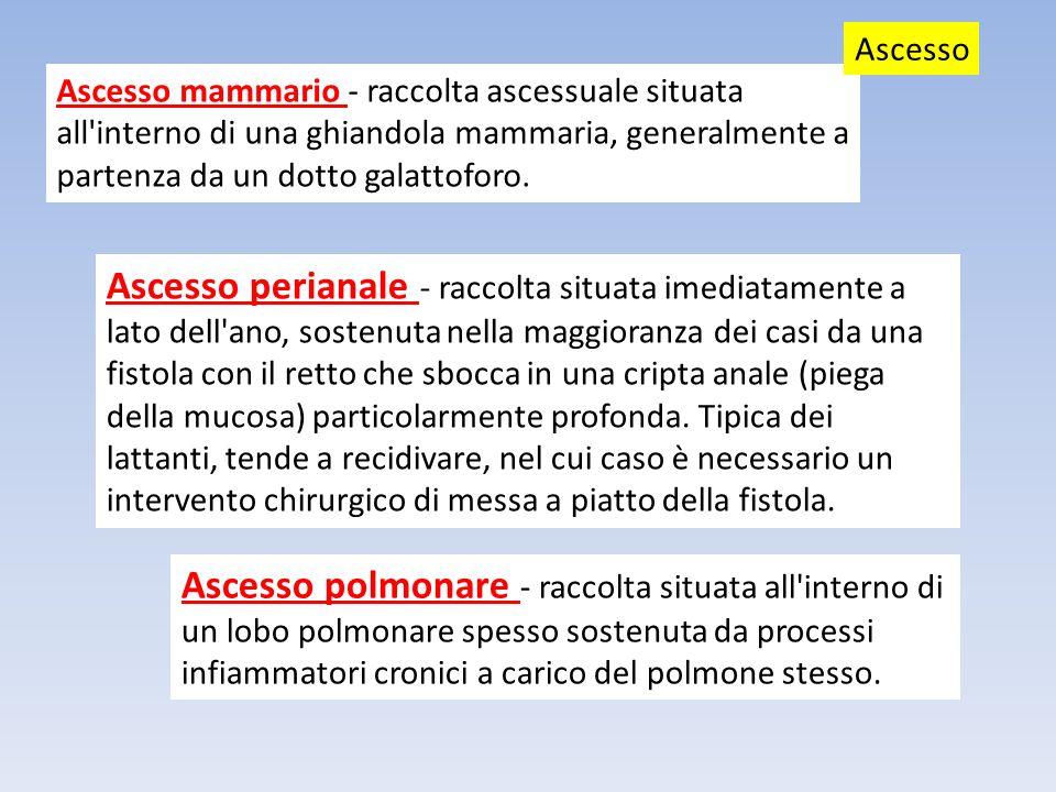 Ascesso Ascesso mammario - raccolta ascessuale situata all interno di una ghiandola mammaria, generalmente a partenza da un dotto galattoforo.