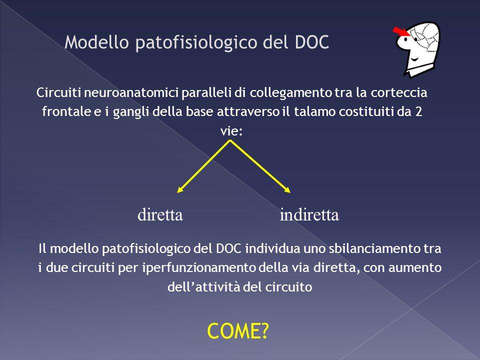 Modello patofisiologico del DOC