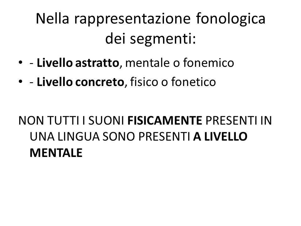 Nella rappresentazione fonologica dei segmenti: