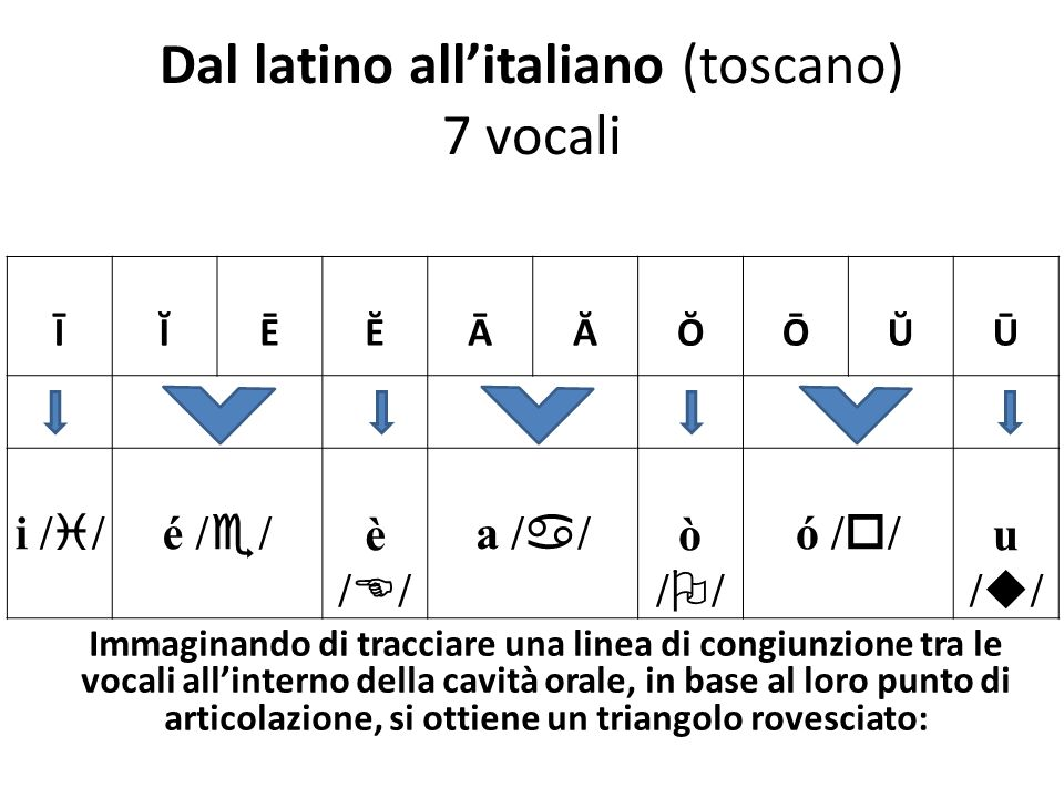 Dal latino all'italiano (toscano) 7 vocali