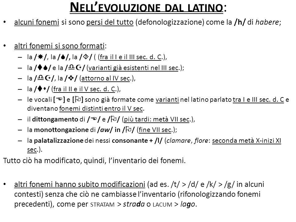 Nell'evoluzione dal latino: