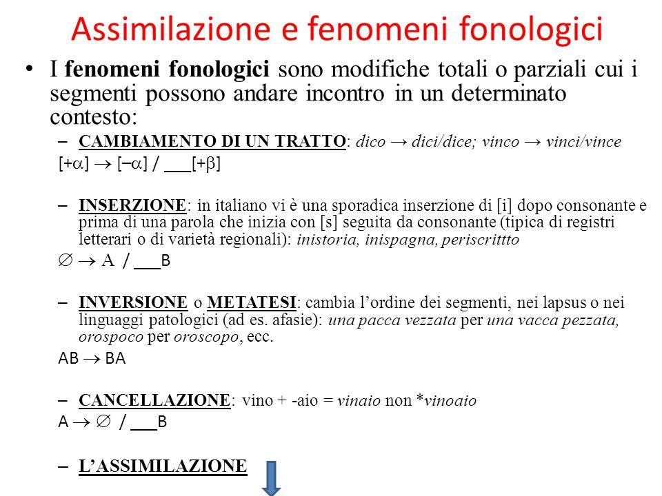 Assimilazione e fenomeni fonologici