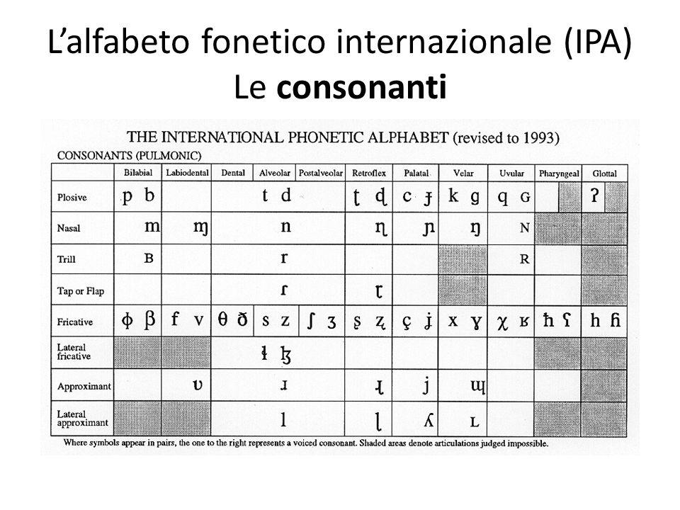 L'alfabeto fonetico internazionale (IPA) Le consonanti