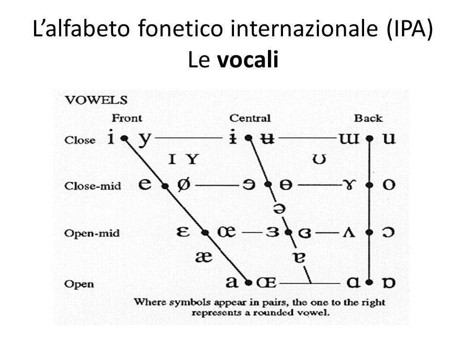 L'alfabeto fonetico internazionale (IPA) Le vocali