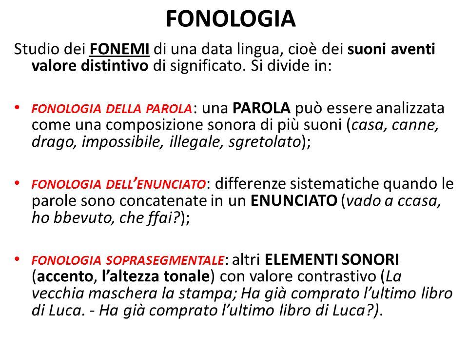 FONOLOGIA Studio dei FONEMI di una data lingua, cioè dei suoni aventi valore distintivo di significato. Si divide in: