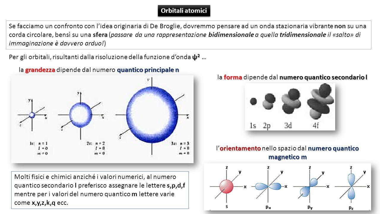 l'orientamento nello spazio dal numero quantico magnetico m