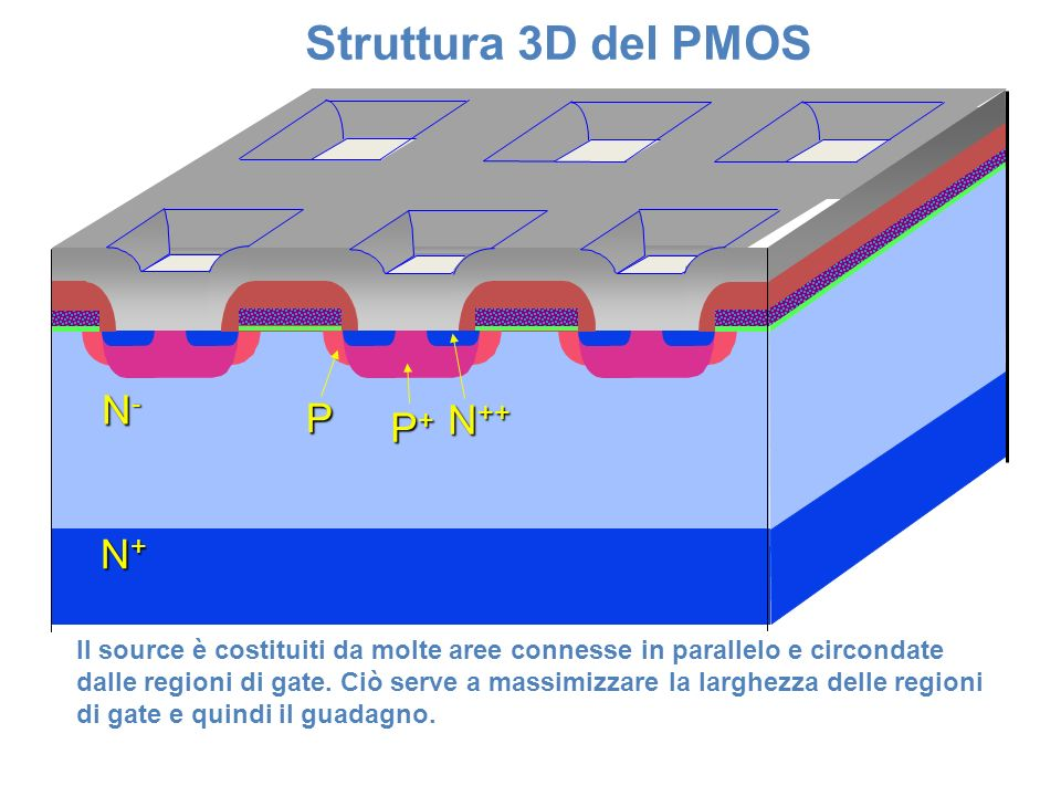 Struttura 3D del PMOS N- P N++ P+ N+