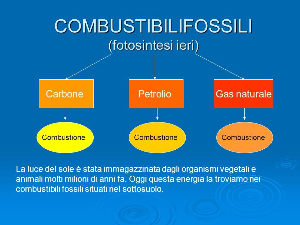 COMBUSTIBILIFOSSILI (fotosintesi ieri)