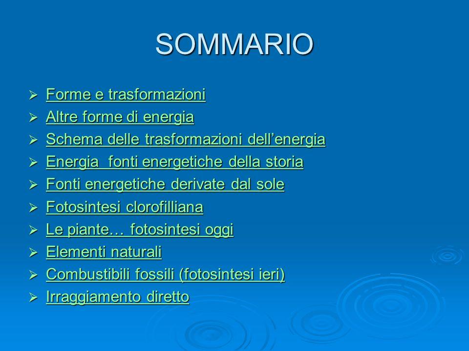 SOMMARIO Forme e trasformazioni Altre forme di energia