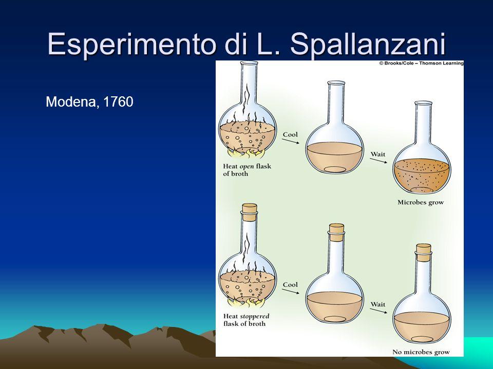 Esperimento di L. Spallanzani