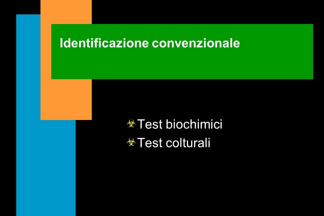 Identificazione convenzionale
