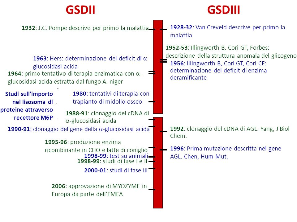 GSDII GSDIII 1932: J.C. Pompe descrive per primo la malattia