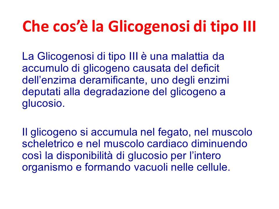 Che cos'è la Glicogenosi di tipo III