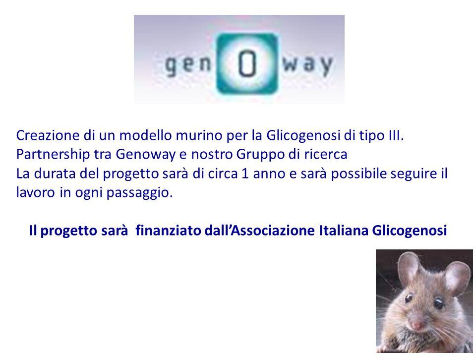 Il progetto sarà finanziato dall'Associazione Italiana Glicogenosi